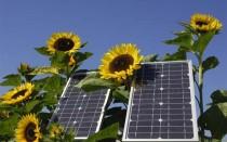 solar-energy-impact